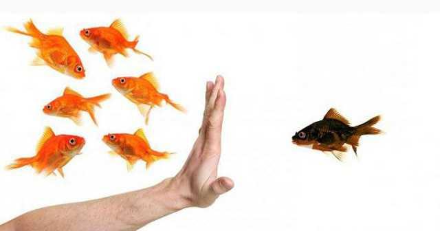 Дискриминация труда, ее понятие, признаки и методы борьбы